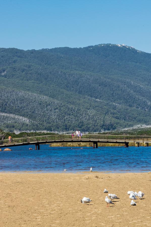 Wilsons海角国家公园的南部的感潮河在Gippsland,澳大利亚 免版税库存图片