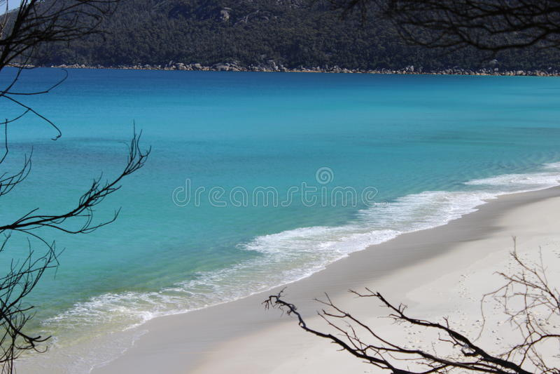 Wilsons海角的海洋 免版税库存照片