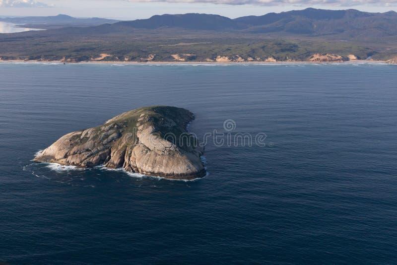 Wilsons cypla parka narodowego powietrzna fotografia obraz royalty free