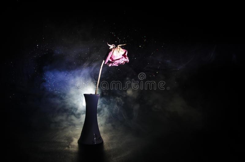 A wilting rose signifies lost love, divorce, or a bad relationship, dead rose on dark background stock photo
