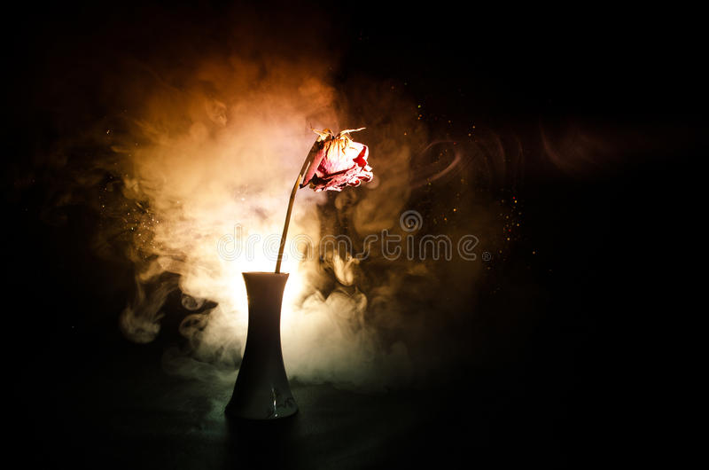 A wilting rose signifies lost love, divorce, or a bad relationship, dead rose on dark background. With smoke royalty free stock photography