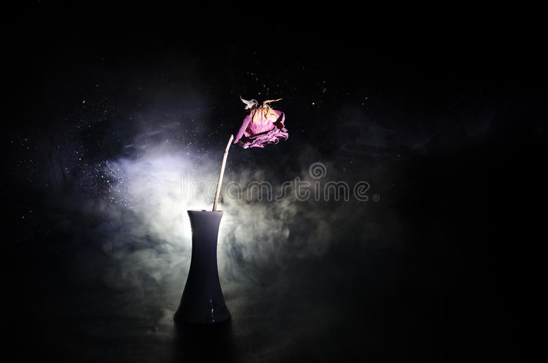 A wilting rose signifies lost love, divorce, or a bad relationship, dead rose on dark background. With smoke stock image