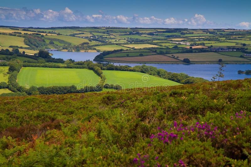Wimbleball LakeExmoor nationalpark Somerset royaltyfria foton