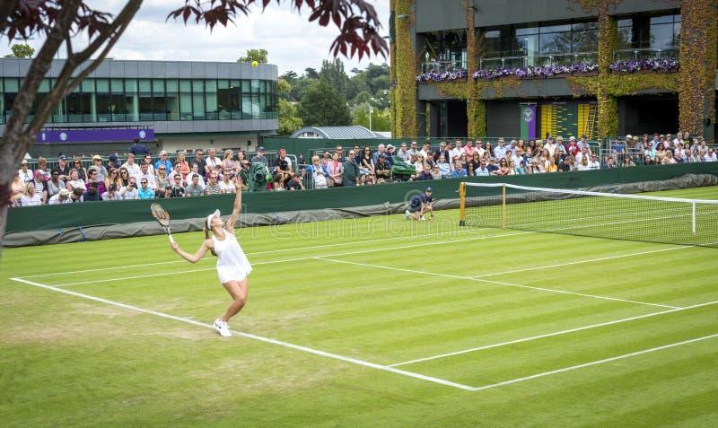 Wimbledon Wszystkie Anglia Tenisowi mistrzostwa 2016, Londyn - 1 fotografia stock
