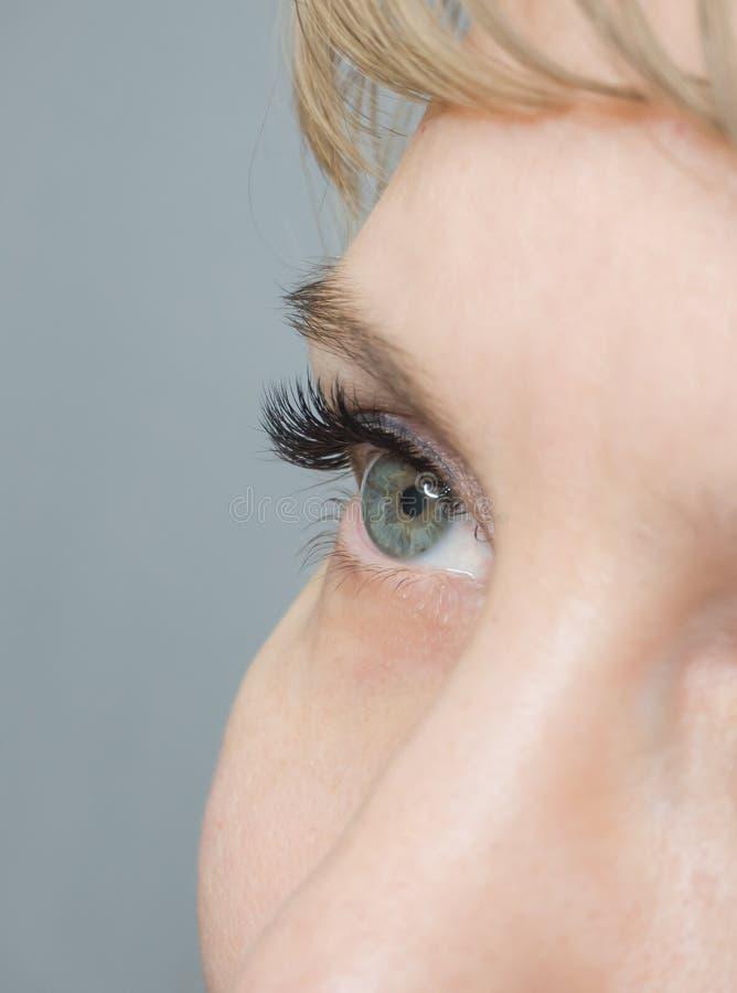 Wimper-Erweiterung Das Auge einer Frau mit Peitschen lizenzfreie stockfotografie