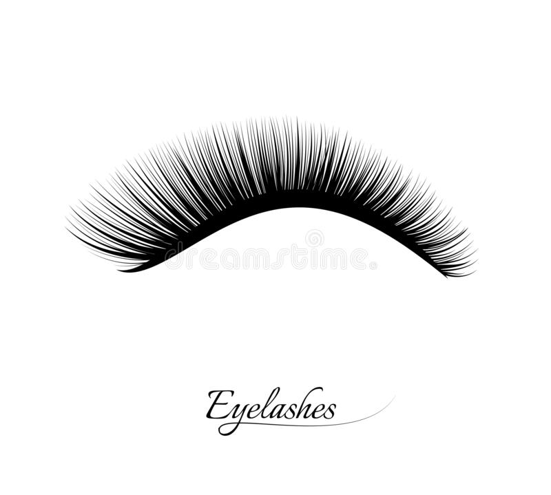 Wimper-Erweiterung Schöne schwarze lange Wimpern Falsche Schönheitswimpern Natürlicher Effekt der Wimperntusche Berufszauber stock abbildung