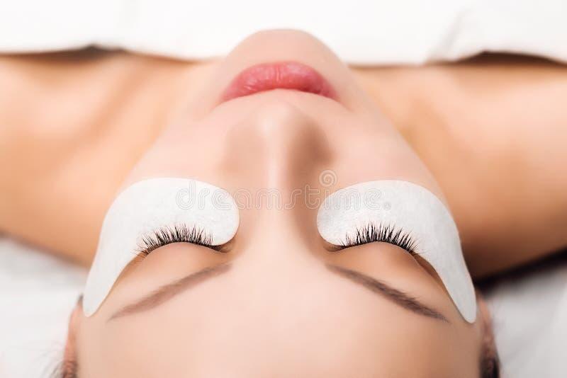 Wimper-Erweiterungs-Verfahren Frauenauge mit den langen Wimpern Schließen Sie oben, selektiver Fokus stockfotos