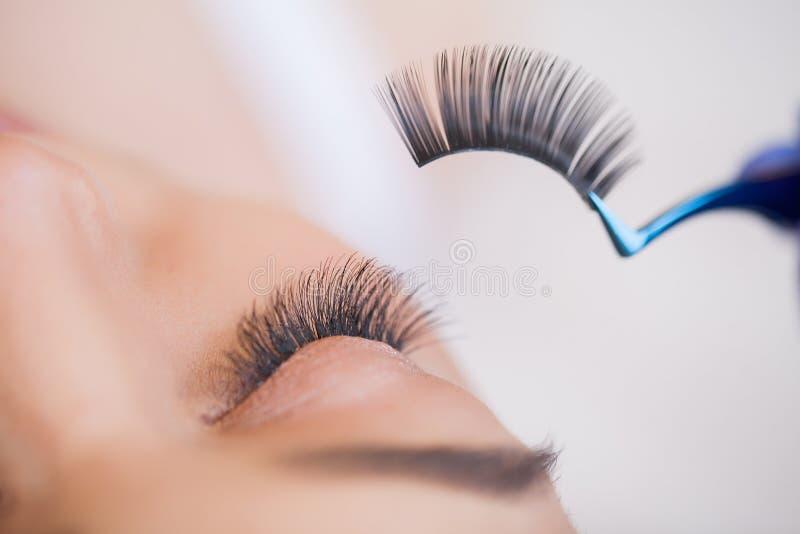 Wimpererweiterungen Gef?lschte Wimpern Wimper-Erweiterungs-Verfahren Berufsstilist, der weibliche Peitschen verl?ngert stockbild
