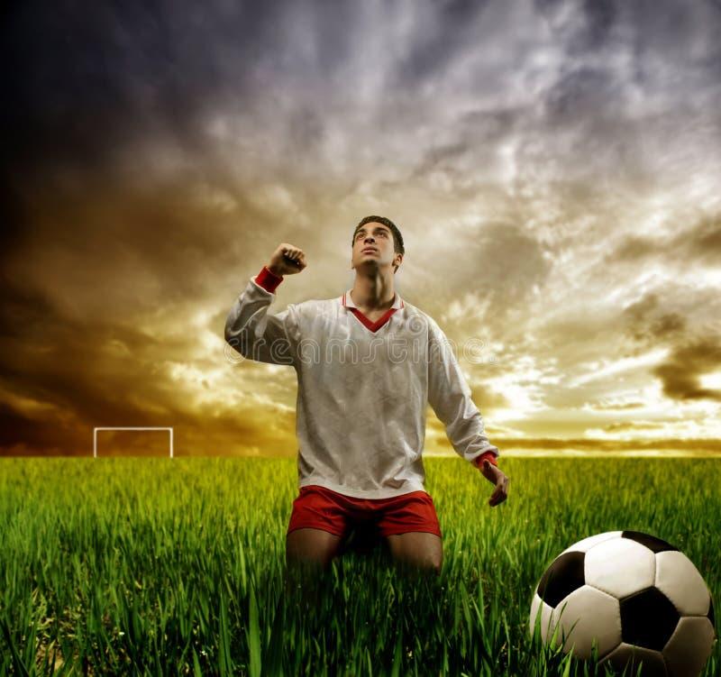 Download Win stock image. Image of goal, soccer, grass, door, sport - 5139779