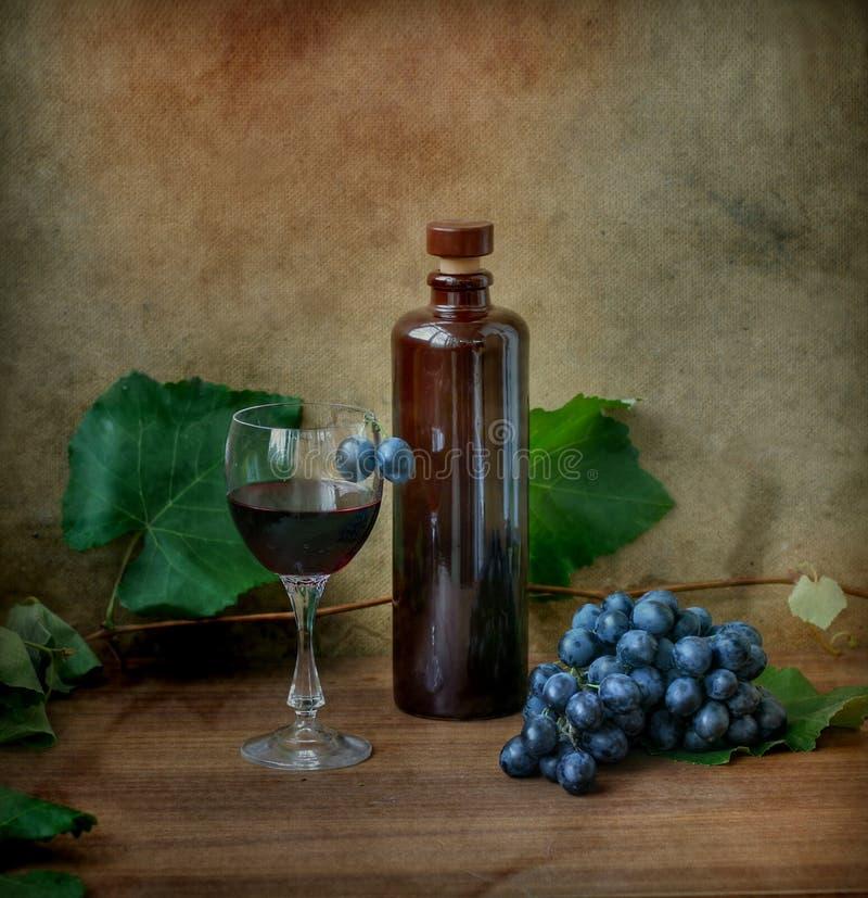 wina żyje winorośli obraz royalty free