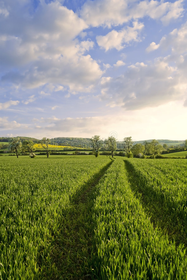 Download Winchcombe The Cotswolds stock image. Image of agricultural - 3595869