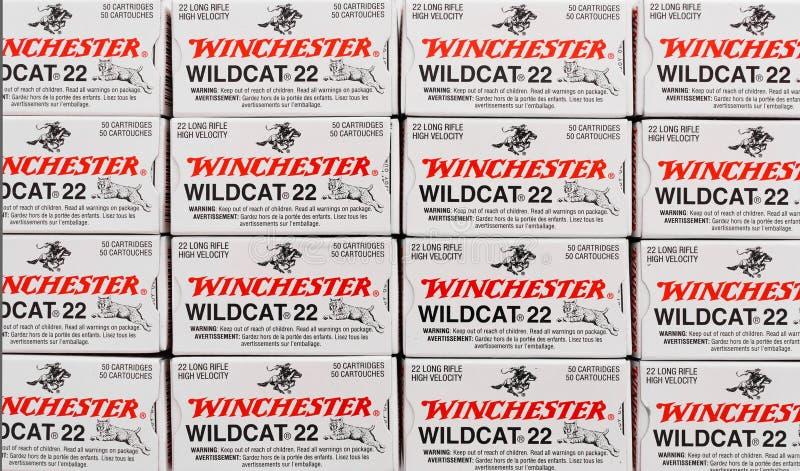 Winchester 22 cajas de la munición imágenes de archivo libres de regalías
