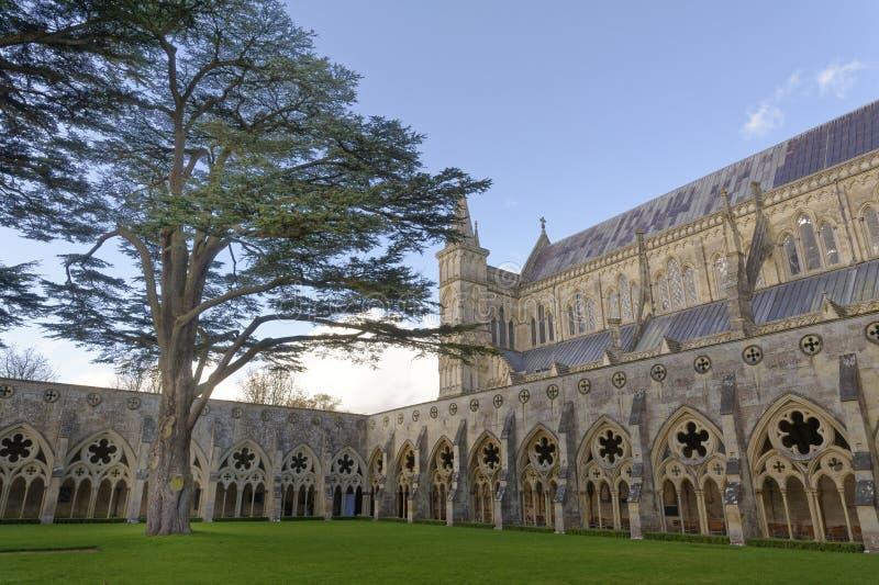 Winchester katedry powierzchowność Majestatyczna architektura england fotografia royalty free