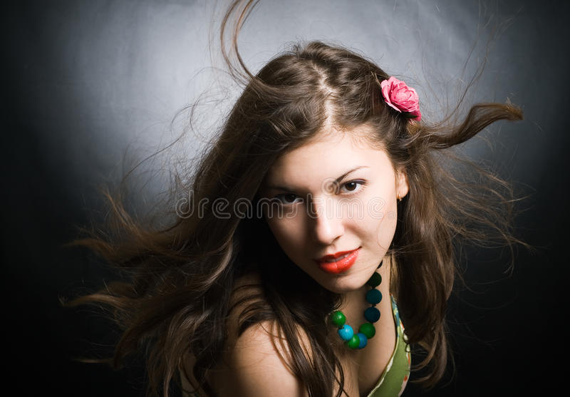 Download Wind And The Attractive Brunette Royalty Free Stock Image - Image: 16280976