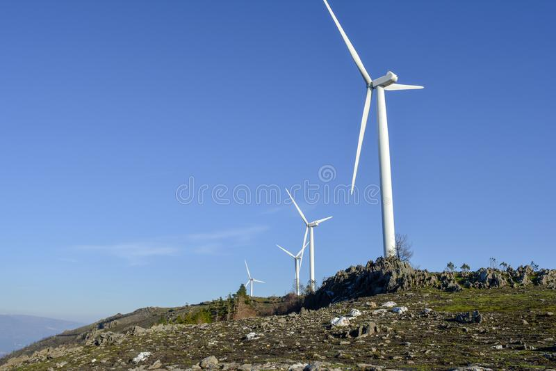 Wind blades in a row royalty free stock photography