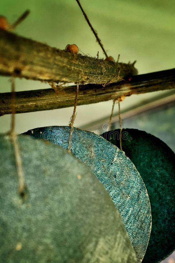 Wind Chime wallpaper background. Close-up of circular shell windchime stock image