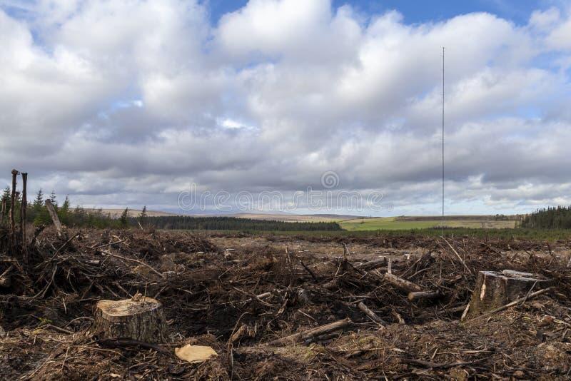 Wind Controlemast royalty-vrije stock afbeelding