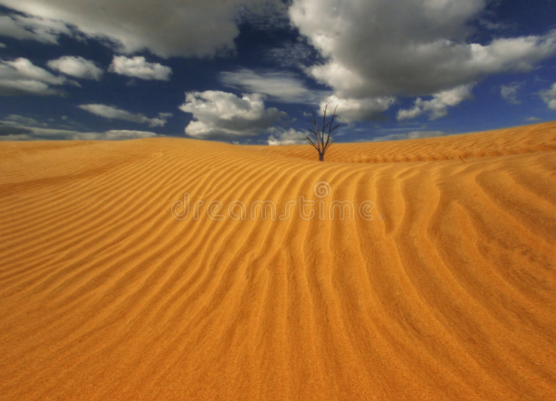 Wind of Death Valley royalty free stock images