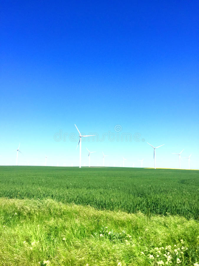 Wind energy. For a clean environment on a sunny day royalty free stock image