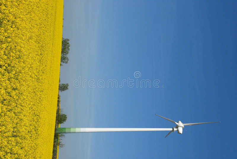 Wind energy mast in field. A view of an wind energy generating tower standing in the middle of a golden field against a beautiful blue sky. Vertical perspective royalty free stock images