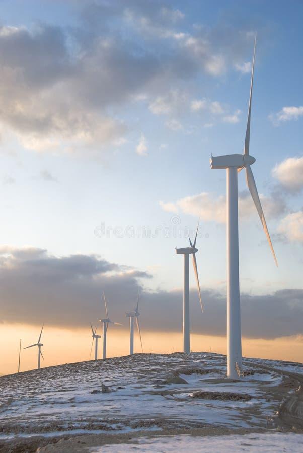 wind för bergsnowturbiner arkivfoton