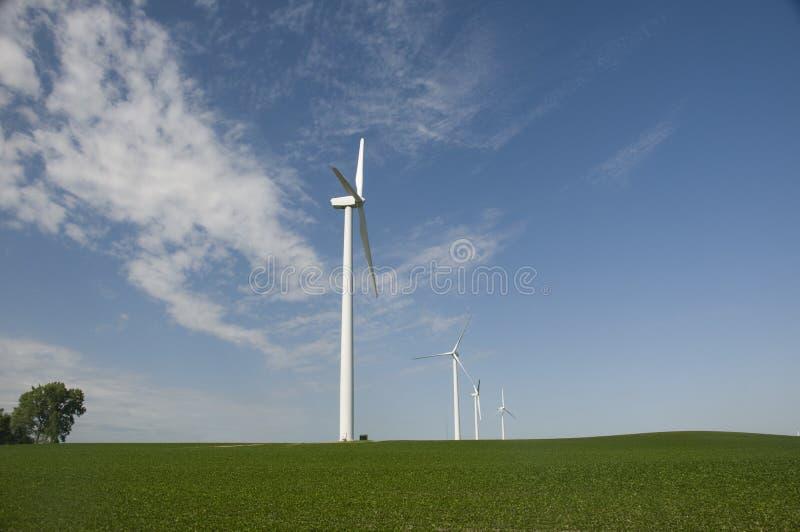 wind för turbiner för kantjusteringsiowa soybean royaltyfri bild
