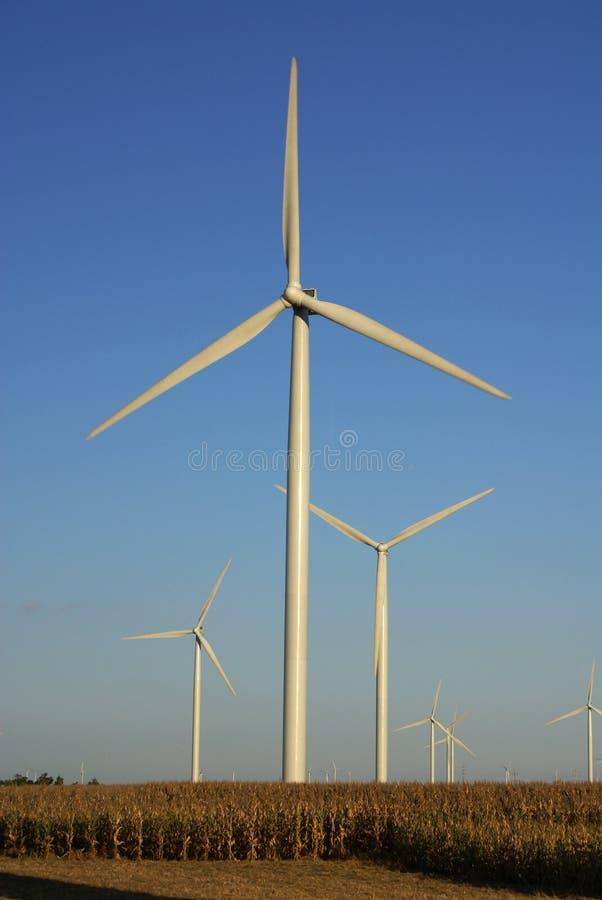 Free Wind Farm Royalty Free Stock Photo - 3258865