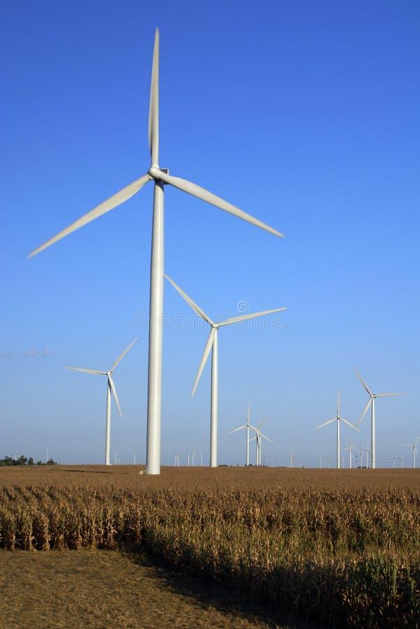 Free Wind Farm Royalty Free Stock Photography - 3258887