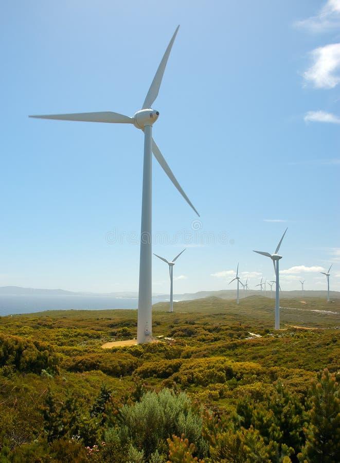 Wind Farm. Albany, Western Australia stock photo