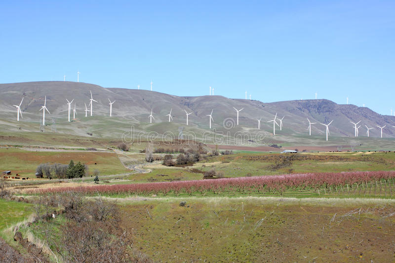 Download Wind farm stock image. Image of outdoor, wine, energy - 30167151