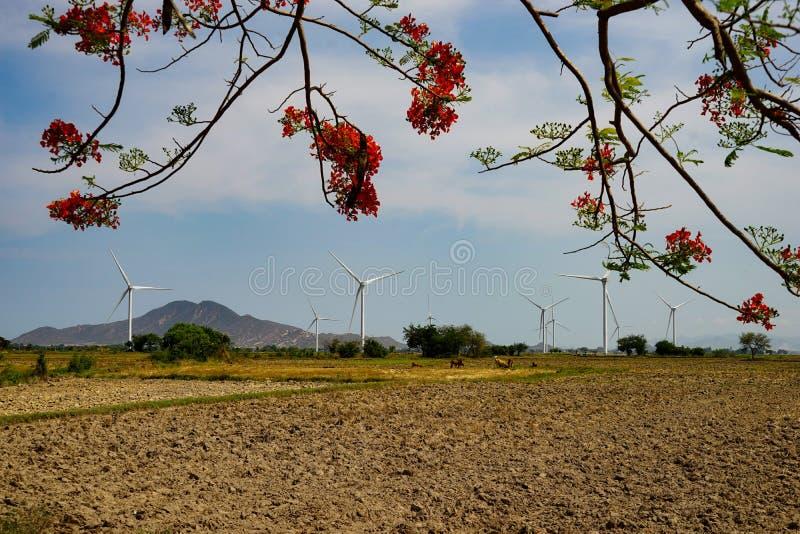 Wind gedreven elektrische centrales stock afbeelding