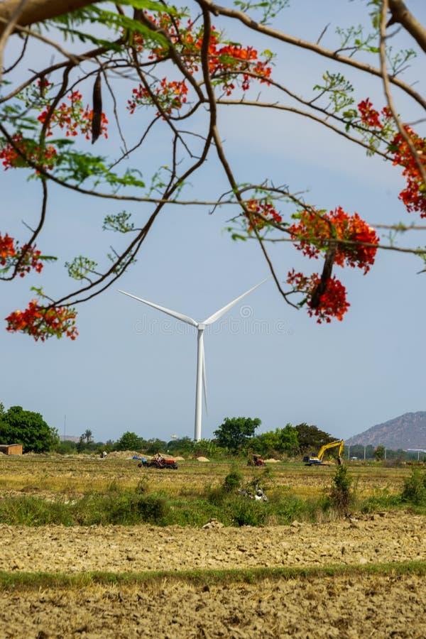 Wind gedreven elektrische centrales royalty-vrije stock afbeeldingen