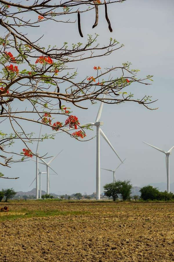 Wind gedreven elektrische centrales stock afbeeldingen
