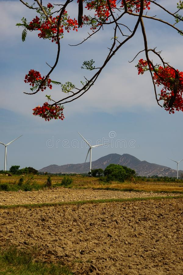Wind gedreven elektrische centrales stock fotografie