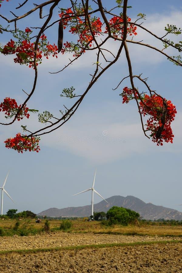 Wind gedreven elektrische centrales royalty-vrije stock fotografie