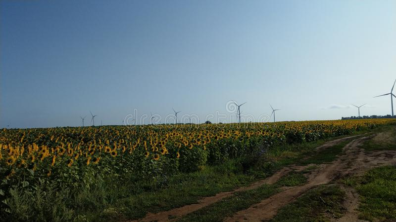 Wind generators in the field stock photography