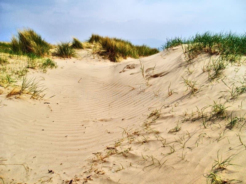 Wind-gespaltene Sanddünen, schwarze Felsen-Sande lizenzfreie stockbilder