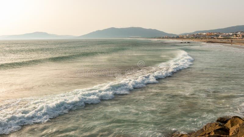 Wind Geworpen Oceaan stock foto