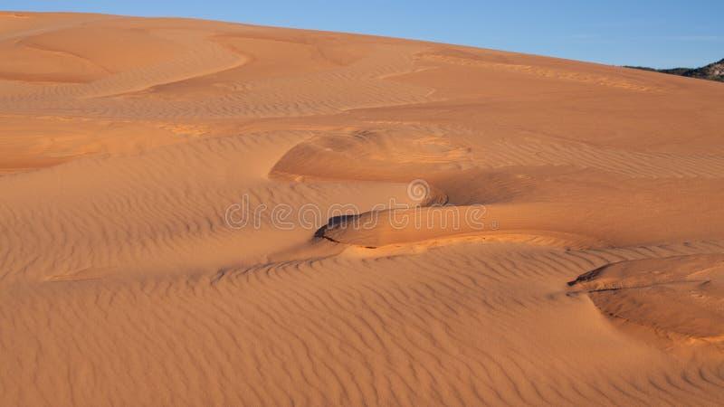 Wind hat Kräuselungsmuster im Sand am korallenroten rosa Sanddünen Nationalpark in Utah gebildet stockbild