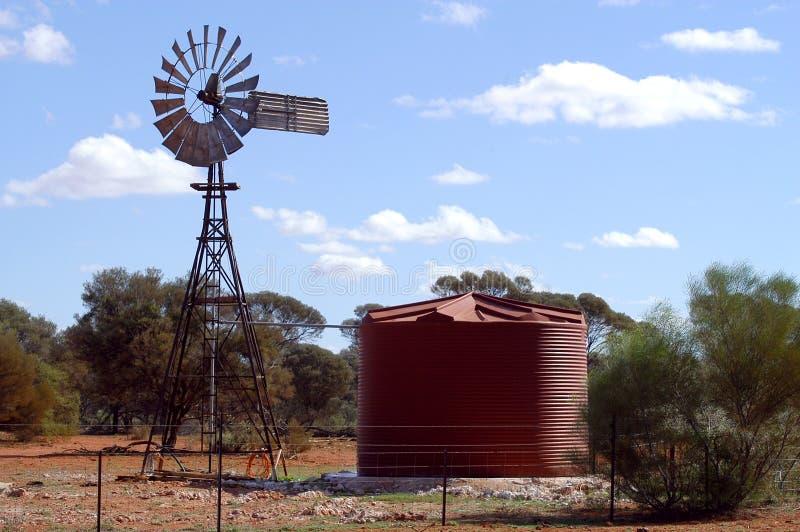 Wind mal i den australiensiska busken royaltyfri foto