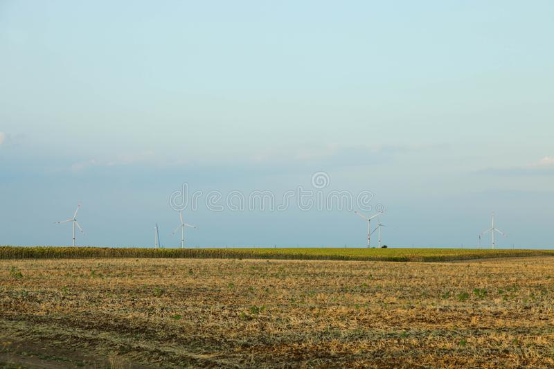 Wind mill farm in field royalty free stock images