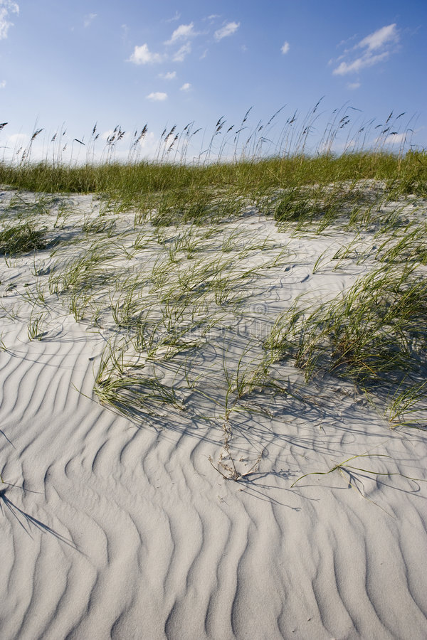 Wind patterns on beach royalty free stock photos