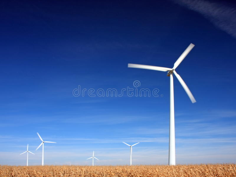 Download Wind power stock image. Image of nature, plant, corn - 11508781