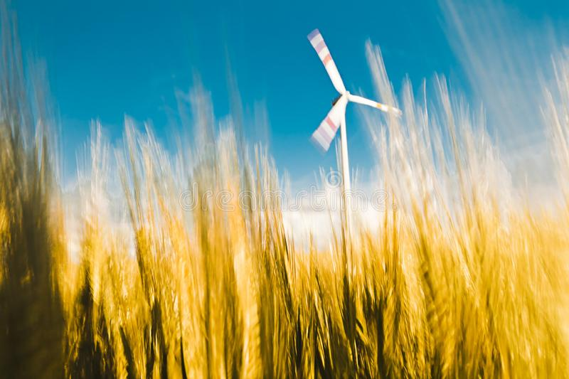 Natural green wind energy on golden field. royalty free stock photo