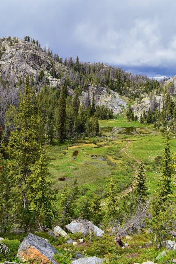 Wind River område, Rocky Mountains, Wyoming, sikter från fotvandring som fotvandrar slingan till den Titcomb handfatet från Elkha royaltyfri bild