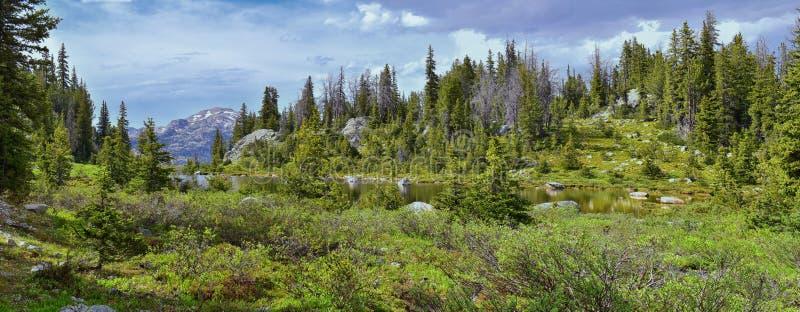 Wind River område, Rocky Mountains, Wyoming, sikter från fotvandring som fotvandrar slingan till den Titcomb handfatet från Elkha arkivfoton