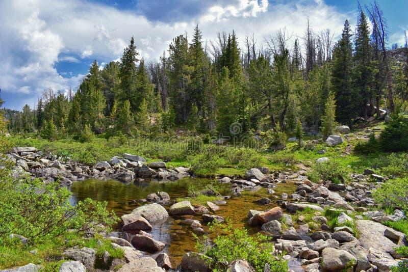 Wind River område, Rocky Mountains, Wyoming, sikter från fotvandring som fotvandrar slingan till den Titcomb handfatet från Elkha arkivbilder