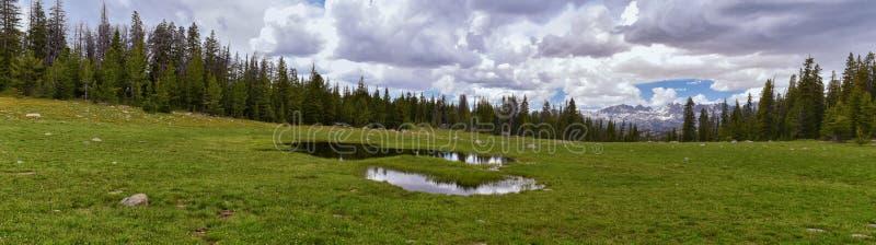 Wind River-Strecke, Rocky Mountains, Wyoming, Ansichten von wanderndem Wanderweg zu Titcomb-Becken von Elkhart-Park Trailhead Geh lizenzfreies stockfoto