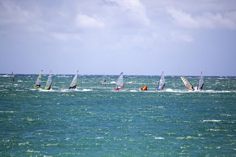 Download Wind Surfing stock photo. Image of maui, hawaii, board - 33881140