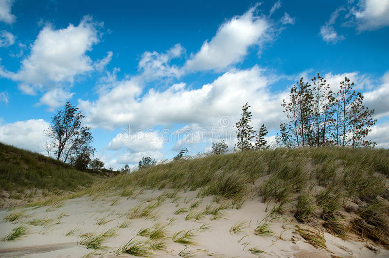 Wind swept michigan dunes royalty free stock photography